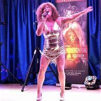 A TINA Affair - Tina Turner Tribute